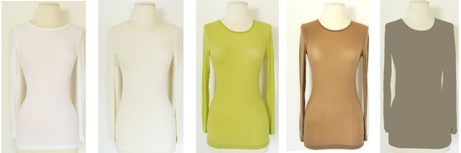 amb 3010 long sleeve crew neck sheer top color swatch 1