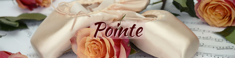 pointe dance wear and accessories